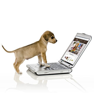 checkout-hero-puppy-computer