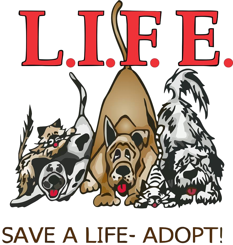 Welcome to LIFE Animal Rescue